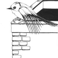klein vogeltje 001.jpg