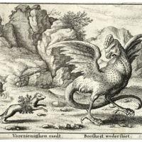 Basilisk (hanendraak) en wezel (17e eeuw).