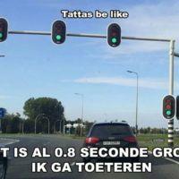 tattas groen stoplicht.jpg